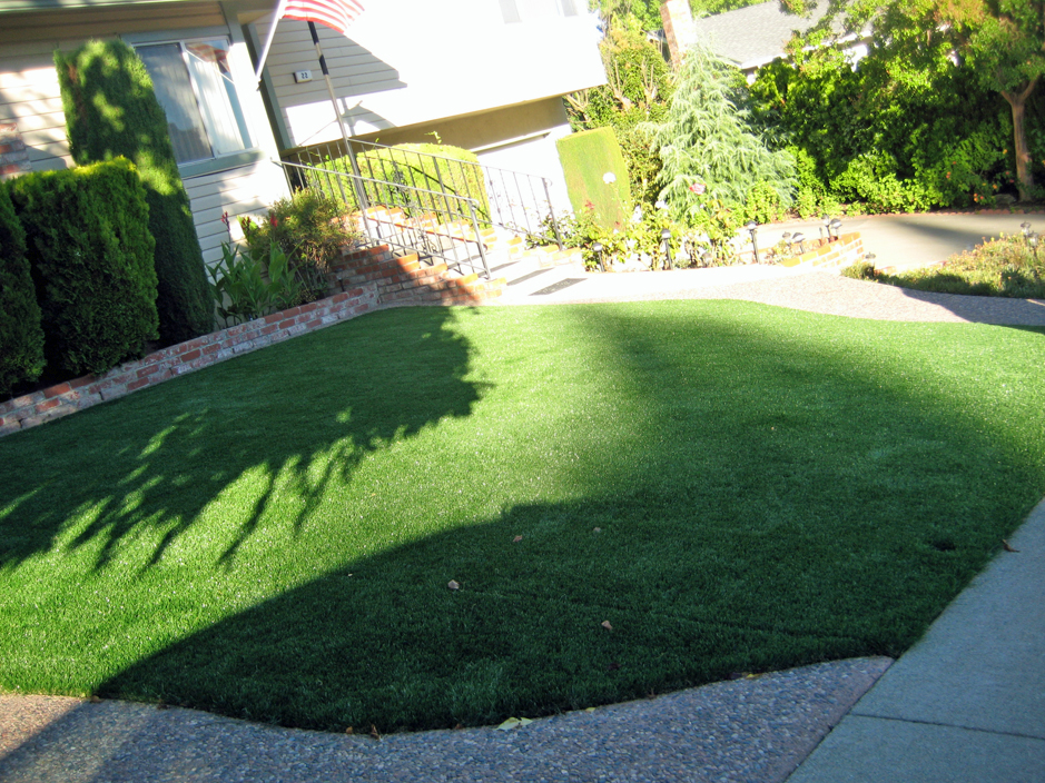 Fake Turf Portland Tennessee Landscape Ideas Front Yard Design