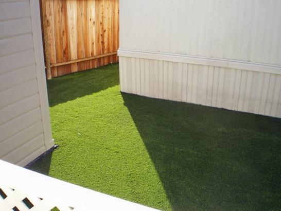 Artificial Grass Photos: Artificial Grass Carpet Allardt, Tennessee Landscaping Business, Backyard Makeover