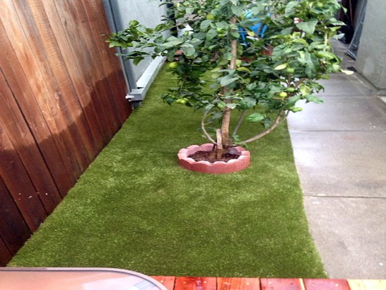 Artificial Grass Carpet Niota, Tennessee City Landscape, Backyard Landscaping artificial grass