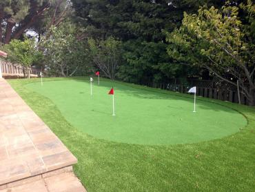 Artificial Grass Photos: Artificial Grass Carpet Walnut Hill, Tennessee Office Putting Green, Backyard