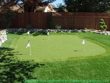 Artificial Grass Goodlettsville, Tennessee Landscaping, Backyard Ideas artificial grass