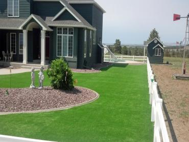 Artificial Grass Photos: Artificial Grass Installation Niota, Tennessee Roof Top, Front Yard Ideas