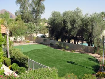 Artificial Grass Photos: Artificial Grass Installation Signal Mountain, Tennessee Landscape Photos, Backyard
