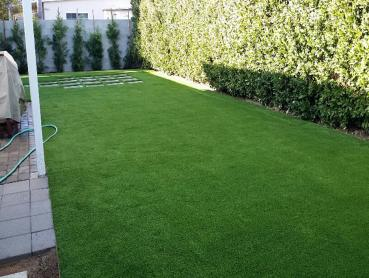Artificial Grass Photos: Artificial Grass Installation Sneedville, Tennessee Lawn And Garden, Backyard Garden Ideas