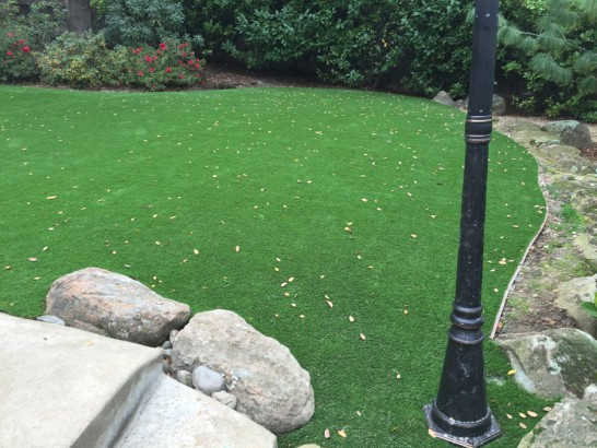 Artificial Grass Photos: Artificial Grass Saulsbury, Tennessee Design Ideas, Backyard Landscaping Ideas