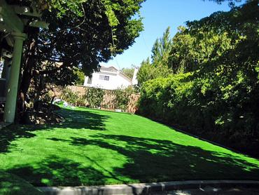Artificial Grass Photos: Artificial Lawn Columbia, Tennessee Gardeners, Backyard Makeover
