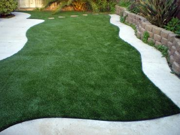 Artificial Grass Photos: Artificial Lawn Munford, Tennessee Roof Top, Small Backyard Ideas