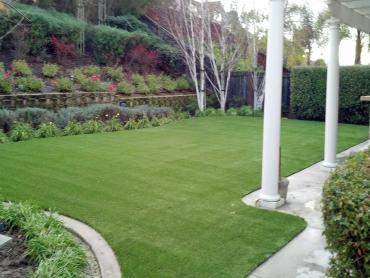 Artificial Grass Photos: Artificial Lawn Yorkville, Tennessee Lawn And Garden, Backyard Designs