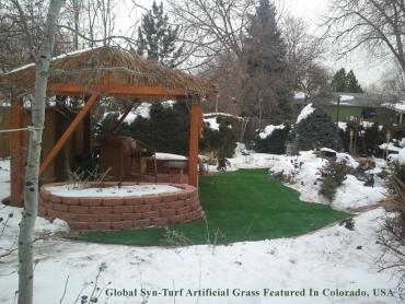 Artificial Turf Cost Ashland City, Tennessee Landscape Ideas, Small Backyard Ideas artificial grass