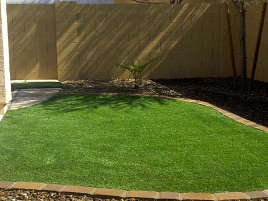 Artificial Grass Photos: Artificial Turf Cost Crossville, Tennessee Landscape Design, Backyards