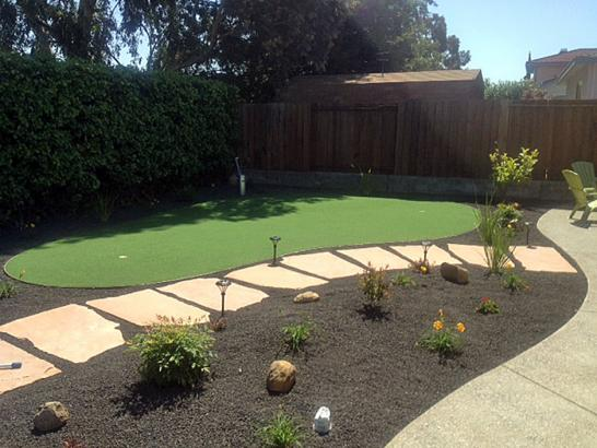 Artificial Grass Photos: Artificial Turf Cost Gainesboro, Tennessee Best Indoor Putting Green, Backyard Ideas