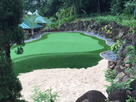 Artificial Grass Photos: Artificial Turf Cost Gatlinburg, Tennessee Indoor Putting Greens