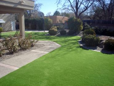 Artificial Grass Photos: Artificial Turf Cost Oak Grove, Tennessee Paver Patio, Front Yard Ideas