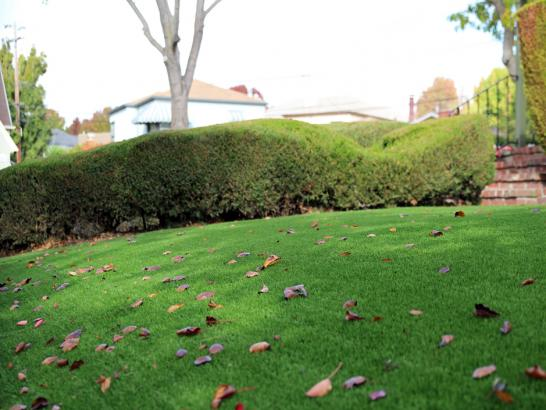Artificial Grass Photos: Artificial Turf Cost Orme, Tennessee Home And Garden, Front Yard Landscaping Ideas