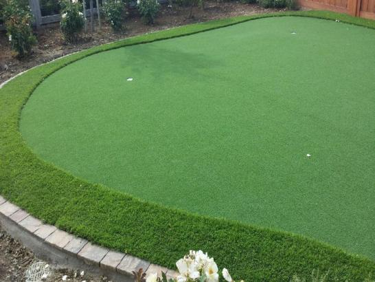 Artificial Grass Photos: Artificial Turf Cost Robbins, Tennessee Gardeners, Backyard Landscaping