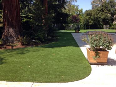 Artificial Grass Photos: Artificial Turf Crossville, Tennessee Grass For Dogs, Landscaping Ideas For Front Yard