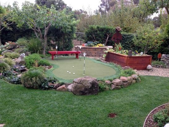 Artificial Grass Photos: Artificial Turf Installation Centerville, Tennessee Outdoor Putting Green, Backyard Landscaping