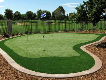 Artificial Turf Installation Rockford, Tennessee Artificial Putting Greens, Backyard Design artificial grass