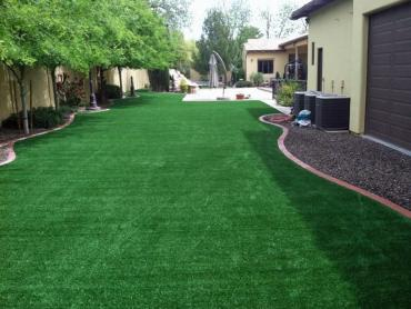 Best Artificial Grass Burns, Tennessee Roof Top, Backyard Design artificial grass