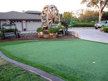 Artificial Grass Photos: Best Artificial Grass Central, Tennessee Putting Green Turf, Front Yard Design