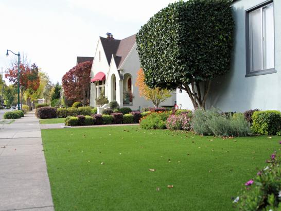 Artificial Grass Photos: Best Artificial Grass Falling Water, Tennessee Lawn And Landscape, Front Yard Landscaping