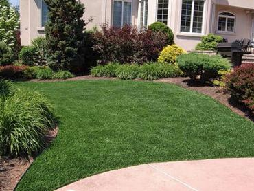 Artificial Grass Photos: Best Artificial Grass Lawrenceburg, Tennessee Lawns, Front Yard Landscaping Ideas