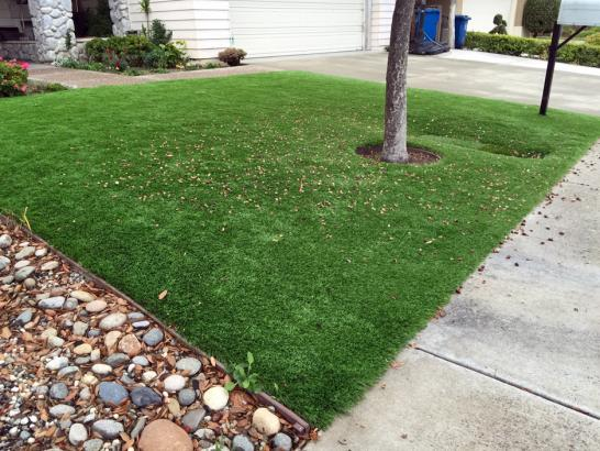 Artificial Grass Photos: Best Artificial Grass Spring City, Tennessee Home And Garden, Front Yard