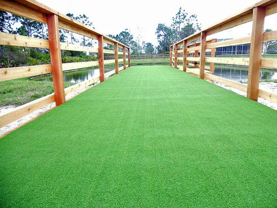 Artificial Grass Photos: Best Artificial Grass Thompson's Station, Tennessee Indoor Dog Park, Commercial Landscape