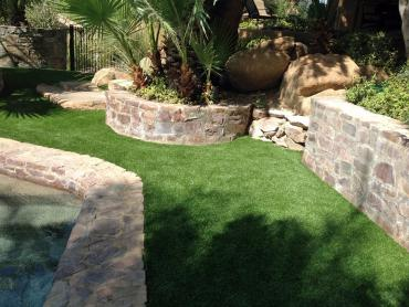 Artificial Grass Photos: Best Artificial Grass Watauga, Tennessee Dog Parks, Above Ground Swimming Pool