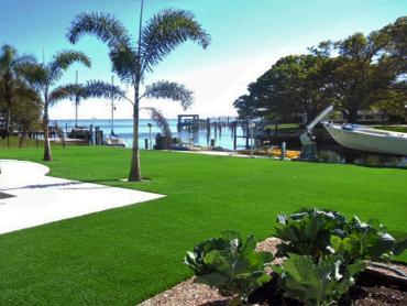 Artificial Grass Photos: Fake Grass Carpet Red Bank, Tennessee Home And Garden, Backyard Designs