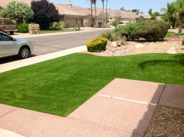 Artificial Grass Photos: Fake Grass Lakewood, Tennessee Garden Ideas, Landscaping Ideas For Front Yard