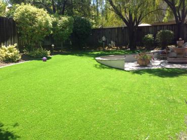 Fake Grass Lobelville, Tennessee Garden Ideas, Backyard Designs artificial grass