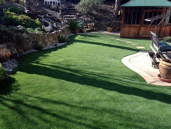 Artificial Grass Photos: Fake Lawn Englewood, Tennessee Landscape Ideas, Backyard Designs