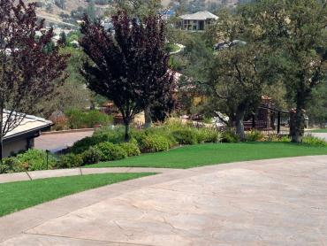Artificial Grass Photos: Fake Lawn Green Hill, Tennessee Lawn And Landscape, Front Yard Design