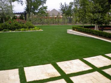 Artificial Grass Photos: Fake Turf Adams, Tennessee Landscape Ideas, Backyards