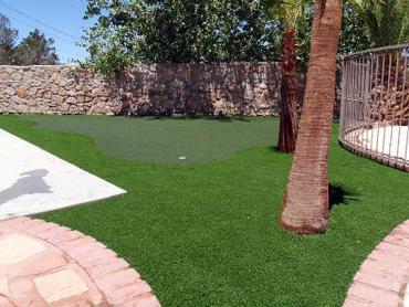 Artificial Grass Photos: Fake Turf Atoka, Tennessee Garden Ideas, Backyard Landscaping Ideas