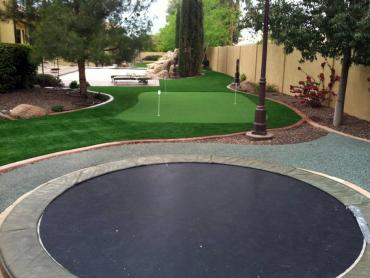 Artificial Grass Photos: Fake Turf East Chattanooga, Tennessee Indoor Playground, Beautiful Backyards