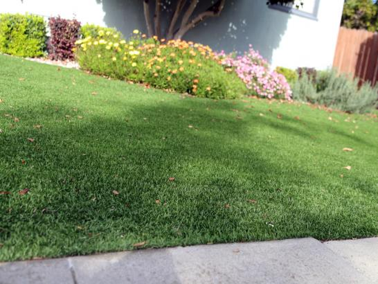 Artificial Grass Photos: Fake Turf Lexington, Tennessee Home And Garden, Landscaping Ideas For Front Yard