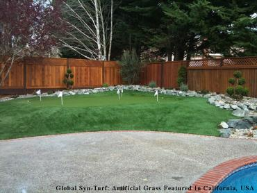Artificial Grass Photos: Fake Turf Mount Juliet, Tennessee Home And Garden, Backyard Design