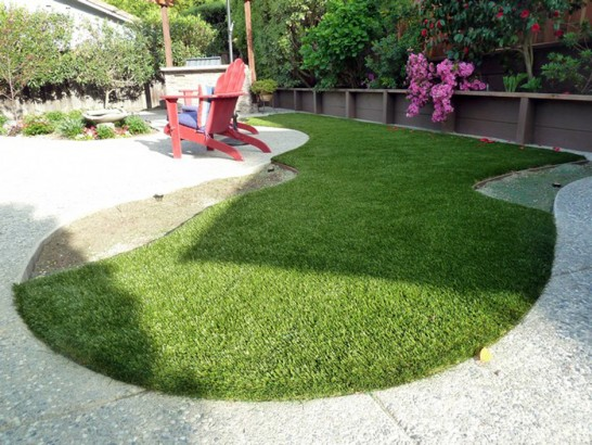 Artificial Grass Photos: Faux Grass Andersonville, Tennessee Dog Hospital, Backyard Landscape Ideas
