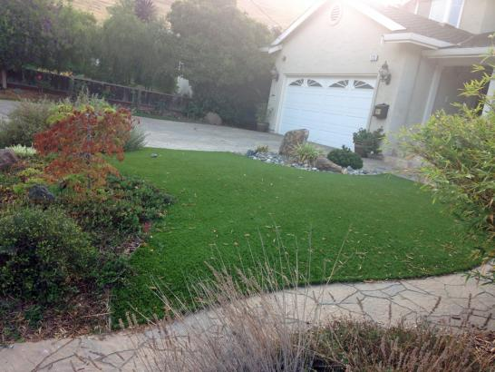 Artificial Grass Photos: Faux Grass Brighton, Tennessee Home And Garden, Landscaping Ideas For Front Yard