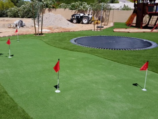 Artificial Grass Photos: Grass Carpet Millington, Tennessee Putting Green Flags, Backyard Landscaping