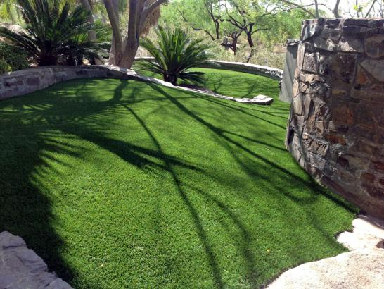 Artificial Grass Photos: Grass Carpet White Bluff, Tennessee Dog Hospital