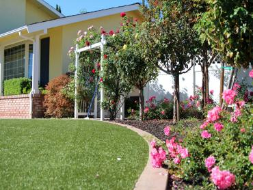 Artificial Grass Photos: Grass Turf Baileyton, Tennessee Backyard Playground, Landscaping Ideas For Front Yard