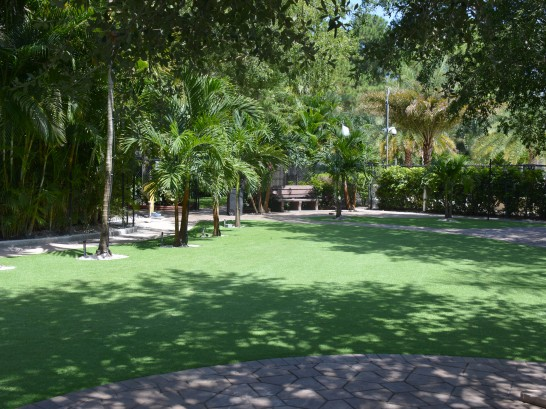 Artificial Grass Photos: Grass Turf Covington, Tennessee Landscaping Business, Pavers