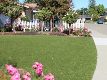 Artificial Grass Photos: Grass Turf Mountain City, Tennessee Landscape Design, Front Yard Landscaping