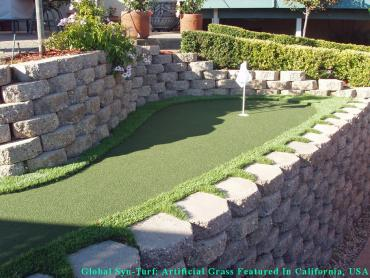 Green Lawn Forest Hills, Tennessee Putting Green, Backyard artificial grass