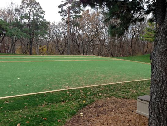 Artificial Grass Photos: How To Install Artificial Grass Ethridge, Tennessee Lawn And Garden