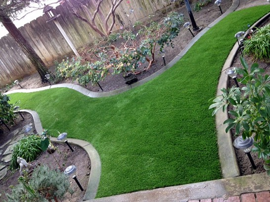 Artificial Grass Photos: How To Install Artificial Grass Etowah, Tennessee Landscape Design, Backyard Designs