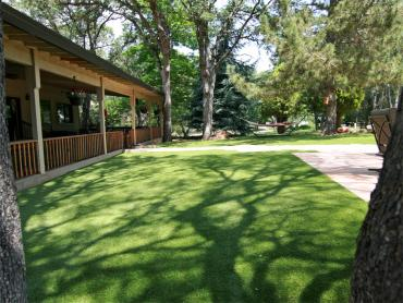 Artificial Grass Photos: Installing Artificial Grass Midtown, Tennessee Dog Run, Backyard Landscape Ideas